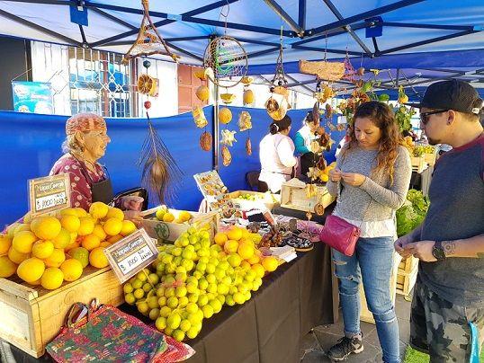 Mercado Campesino llega este jueves a Iquique Glorioso
