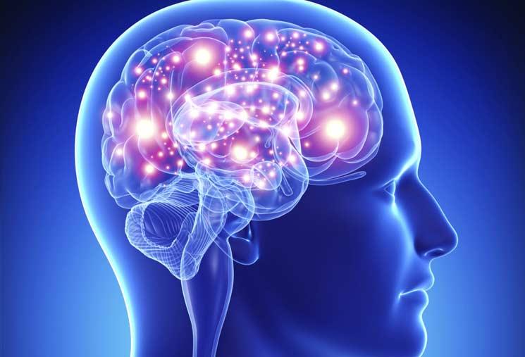 El laberinto de la memoria: cómo mejorar el rendimiento cerebral